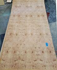 """Chestnut Burl figured cluster wood veneer 48"""" x 96"""" with paper backer 1/40"""" Aaa"""