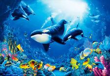 Fototapete Wandbild Unterwasserwelt Fische Wale Tapete Wand Foto Deko 366x254 cm