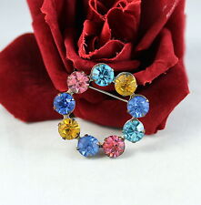 Brooch Feral Cat Rescue Vintage Colorful Rhinestone Circle Pin