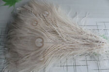 Hot Selling Beautiful 10pcs white 25-30 cm/10-12 inch peacock feathers eyes hot