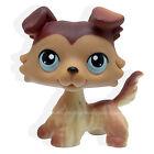 #58 Rera Littlest Pet Shop Brown Collie Dog Puppy Blue Eyes LPS Animal Toy NEW