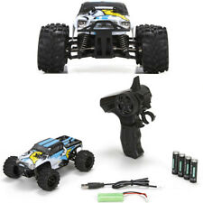 NEW ECX RC 1/24 Ruckus 4WD Monster Truck RTR, Black/White w/ Radio SHIPS FREE