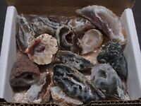 Mini OCO Geodes Collection 6 Oz Natural Crystal Agate Halves
