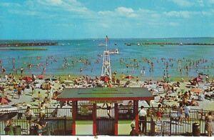 """""""Play Land"""" Rye Beach, Rye, N.Y. gl1978 C5319"""