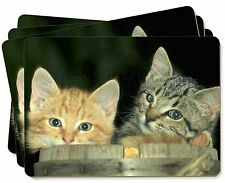 Kittens in Beer Barrel Picture Placemats in Gift Box, AC-83P