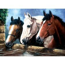 """Junior Large Paint By Number Kit 15.25""""X11.25""""-3 Of A Kind"""