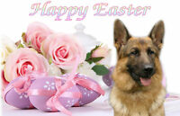 Alsatian German Shepherd Dog Easter Design A6 Textured Card EGSD-1 by paws2print