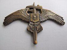 Raider SKULL on MarSoc Badge Antiqued Pin Marine Corps SOCOM Tactical Insignia