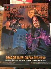 WWE WWF Buried Alive 1996 Poster 16x20 Undertaker