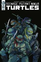 TMNT TEENAGE MUTANT NINJA TURTLES (IDW COMICS) # 101 A COVER