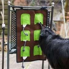 Procyon Schnüffel matte Intelligenzspielzeug für Hunde