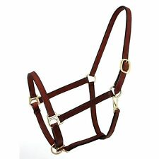 Brown Genuine Leather Horse Size Narrow Track Halter Brass Hardware NEW Tack