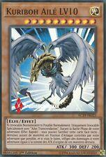 ♦Yu-Gi-Oh!♦ Kuriboh Ailé LV10 (Winged) : AC19-FR023 -VF/Super Rare-