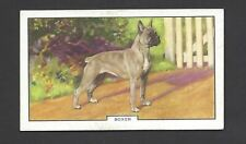 GALLAHER - DOGS, 2ND SERIES - #13 BOXER
