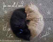 You are all I need Black Kitty and Orange Kitty Cat Love Photo Art Print