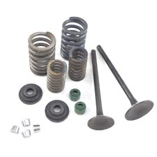 Valve Set W/ Springs for CG125  Copy with 156FM1 Engine