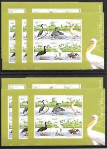 SMT, Guinea-Bissau: BIRDS, S/sheet, lot of 10 blocks, MNH