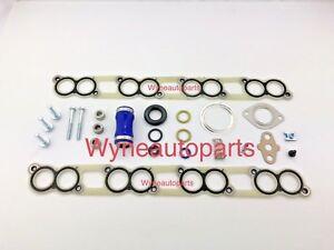 For OEM Ford 6.0 Diesel Intake Manifold Gasket SET Pair + acc- Powerstroke 6.0L