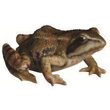 Small Frog Garden Ornament by Vivid Arts-XRL-FROG-F