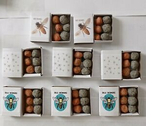 Bee Bombs Biodegradable Paper Seed Bombs 6 in a Box wildflower seeds flower seed