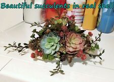 NO WATER! BEAUTIFUL FAUX SUCCULENTS IN REAL SHELL FLOWER ARRANGEMENT HOME DECOR