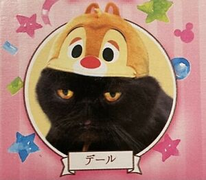 Necos Cosplay For Cats Cat Hat Disney Dale Chipmunk Limited Edition Japan