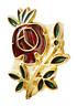 Rosa Cruz Recorte Masónico Masoneria Prendedor Pin