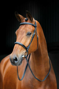 Shires Salisbury Fairford Bridle - Pony-Cob-Full-X/Full - Black or Aus Nut