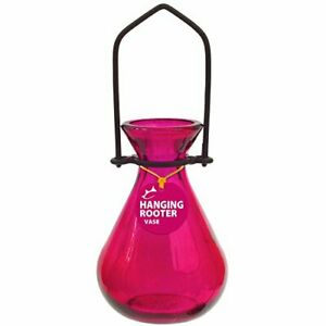 Couronne - Hanging Teardrop Rooter Vase - Fuchsia