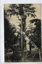 More details for (gy711-460) bukit timah road, singapore c1910 ex e.p.hock card #46