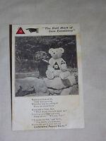 VINTAGE EARLY 1900S LISTERATED PEPSIN GUM DOG TEDDY BEAR  POSTCARD