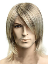 US Stock Men's Wig Straight Blonde Hair Cosplay Party Daily Wear Hair Full Wig