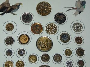 ANTIQUE Picture Buttons BIRD THEME On Card LOT L