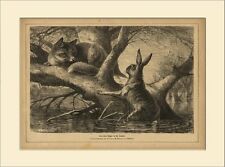 Out of the frying pan into the Fire Fox Flood Hare 1871 Wood Engraving GL 367