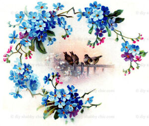 Waterslide Decal Image Transfer Birds Forget Me Nots Upcycle Shabby Chic Antique