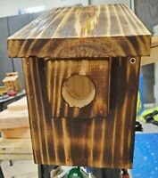 Hand Made Blue Bird House w/ Predator Guard Torched finish with natural oil rub.