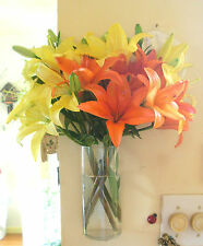 Brighten Your Day With This Cylindrical Hanging Glass Wall Vase