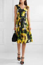 Dolce & Gabbana Floral-print sunflower cotton-poplin black dress 40 uk 8