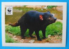 FIGURINA COOP WWF IL GIRO DEL MONDO - N.161 - DIAVOLO DELLA TASMANIA