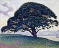 The Bonaventure Pine Paul Signac Landscape Painting Print CANVAS Repro 8x10 SM