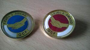 QCF Qualification Awards Level 2 & 3 Lapel Pin Badge Gilt or Nickel, QCF