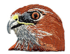 BIRDS - HAWK HEAD - Iron On Embroidered Applique Patch, Birds, Hawks
