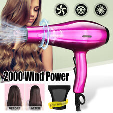 2000W Professional Salon Hair Dryer Pet Dog Cat Blower Heater Quickly