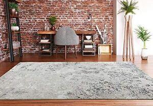 Contemporary Area Rug Online Stylish Floor Carpet Elegant Décor Silver Carpets