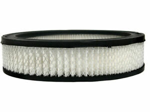 For 1979-1980 Dodge D200 Air Filter AC Delco 25256CK Gold -- New