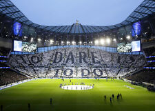 Tottenham > Spurs > To Dare is to do > Print > Canvas > Wall art
