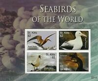 St Kitts 2007 MNH Seabirds of World 4v M/S Birds Noddy Booby Cormorant Albatross
