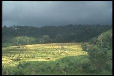 083080 Landscape Northern Bali A4 Photo Print