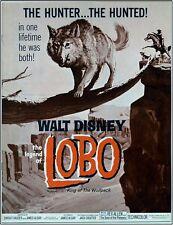 Estate Disney Unused Theater Pressbook 'The Legend of Lobo' 1962