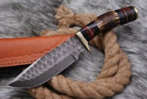 10'inch Custom HAND FORGED DAMASCUS STEEL HUNTING KNIFE STAG Antler HANDLE